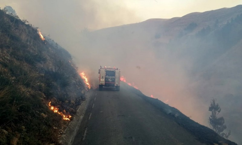 <span style='color:#780948'>ARCHIVED</span> - Over 150 wild fires rage in northern Spain