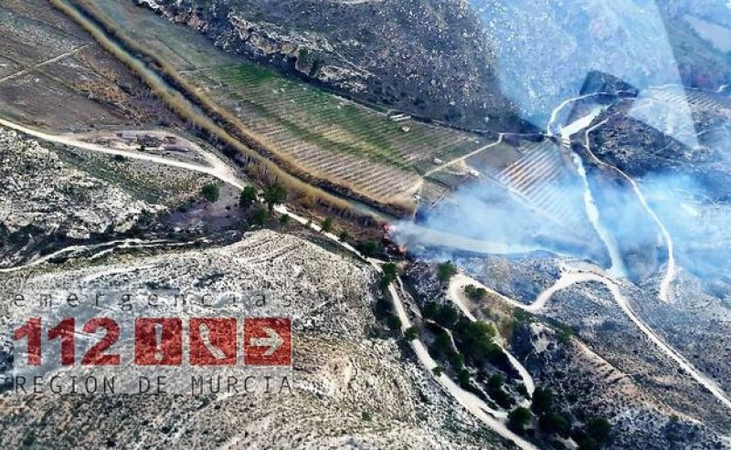 Moratalla wild fire affects a hectare of land near the Cenajo reservoir