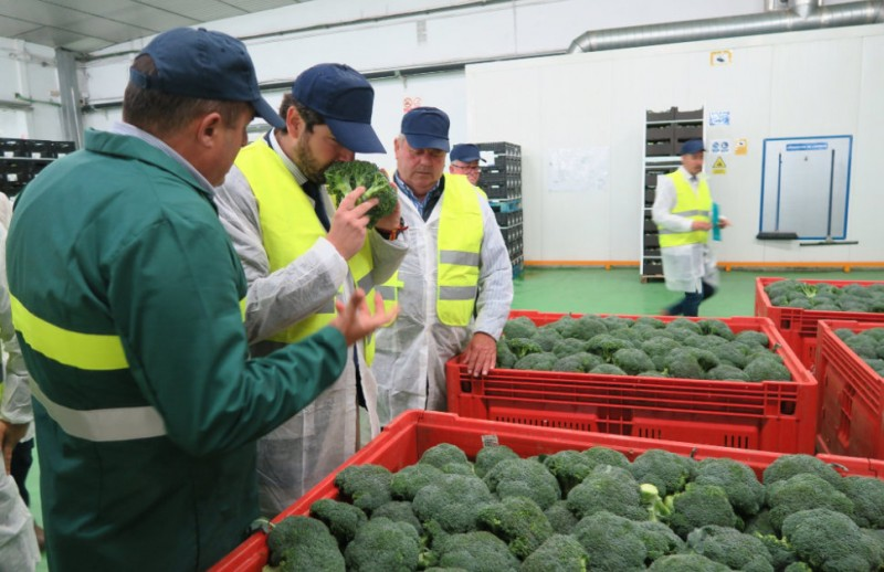 Murcia president highlights ecological farming sector in the Region