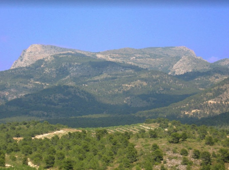 <span style='color:#780948'>ARCHIVED</span> - Proposals to make Sierra Espuña one of the Natural Parks of Spain