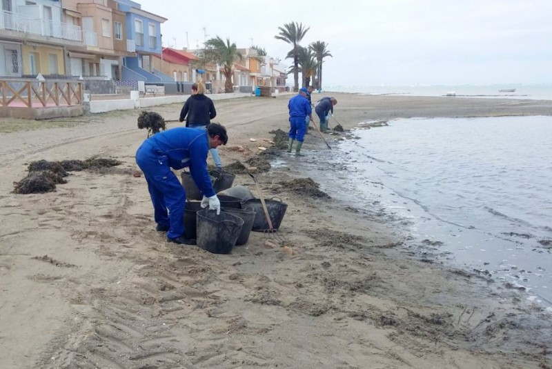 <span style='color:#780948'>ARCHIVED</span> - Pre-Easter beach cleaning under way in the Mar Menor
