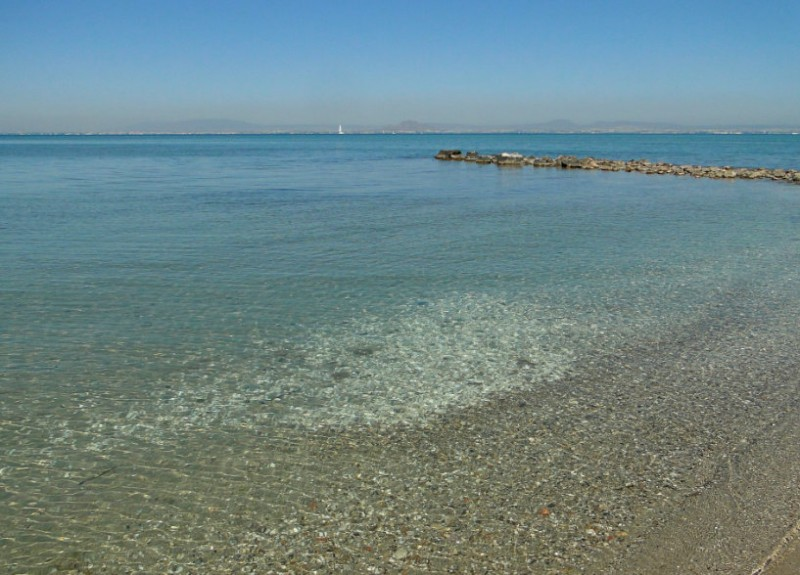 <span style='color:#780948'>ARCHIVED</span> - Water quality deteriorates in the Mar Menor