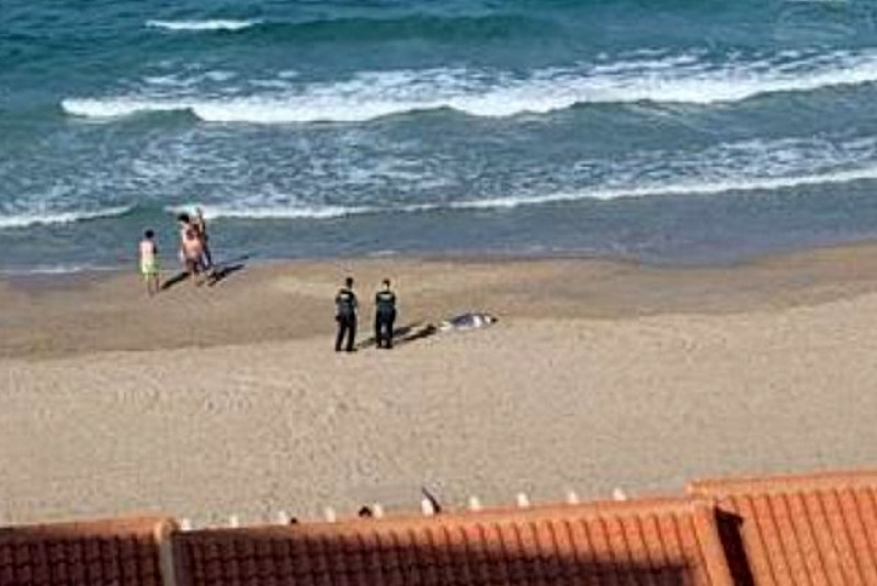 Slovakian woman drowns at the beach in La Manga