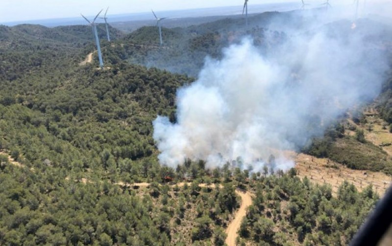 Forest fire ravages 200 hectares in the south of Catalunya
