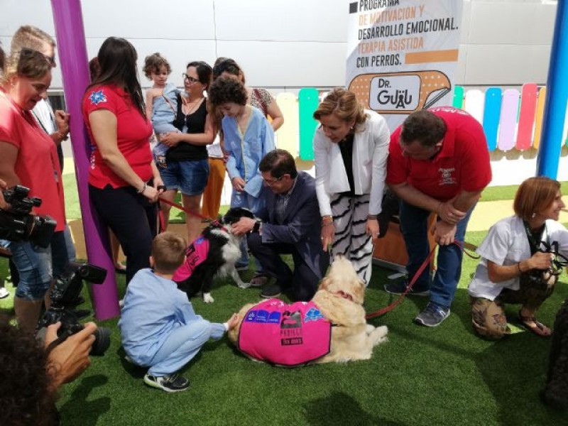 <span style='color:#780948'>ARCHIVED</span> - Dog therapy for child patients at the Arrixaca hospital in Murcia