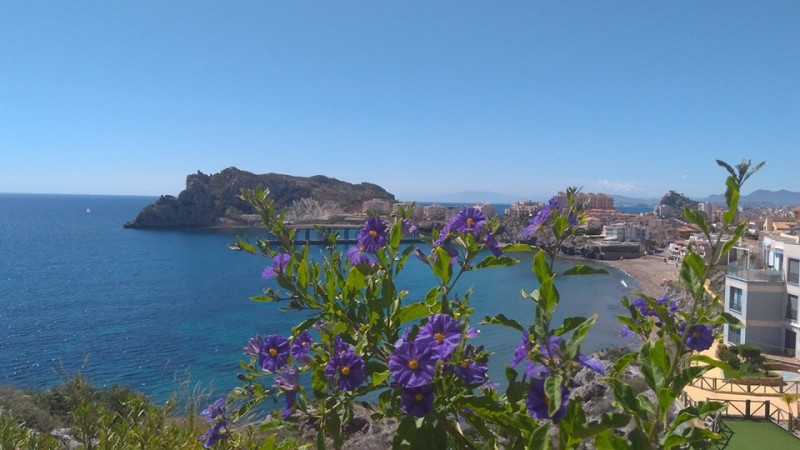 What's on in Águilas during July