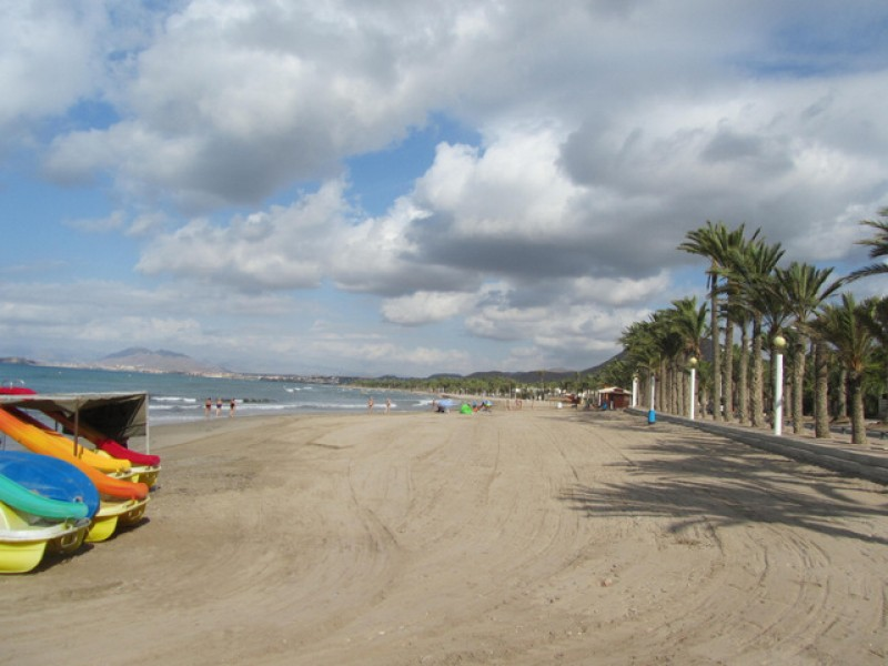 Specialist disabled bathing assistance this summer at the beaches of La Azohía and Playa Honda