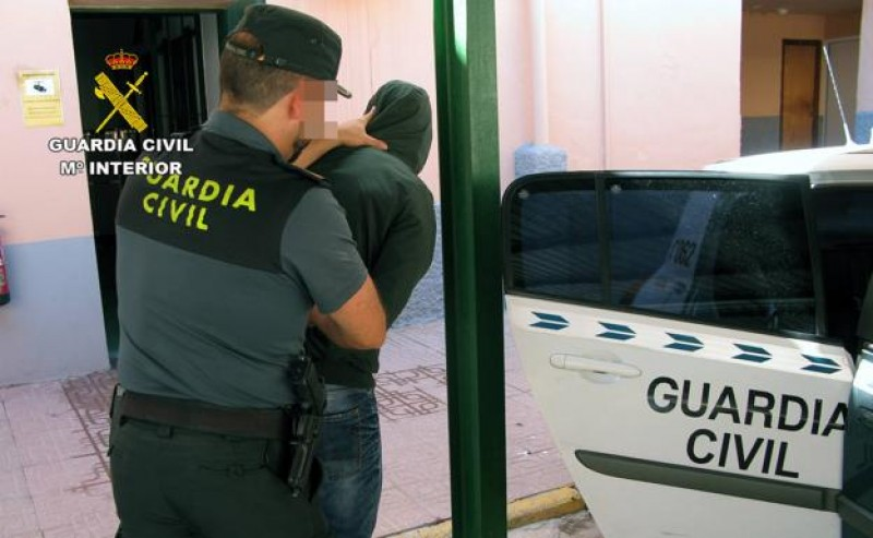 9 arrested after a series of burglaries in Lorca and Águilas