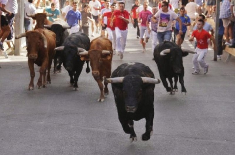 <span style='color:#780948'>ARCHIVED</span> - 12th to17th July, annual fiestas and bull runs in Moratalla