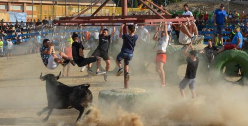 <span style='color:#780948'>ARCHIVED</span> - Man dies in Alicante after being gored in bull-related fiesta event