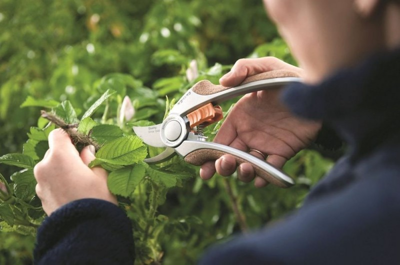 <span style='color:#780948'>ARCHIVED</span> - 21st September, free autumn pruning workshops at Leroy Merlin stores in Murcia and Cartagena