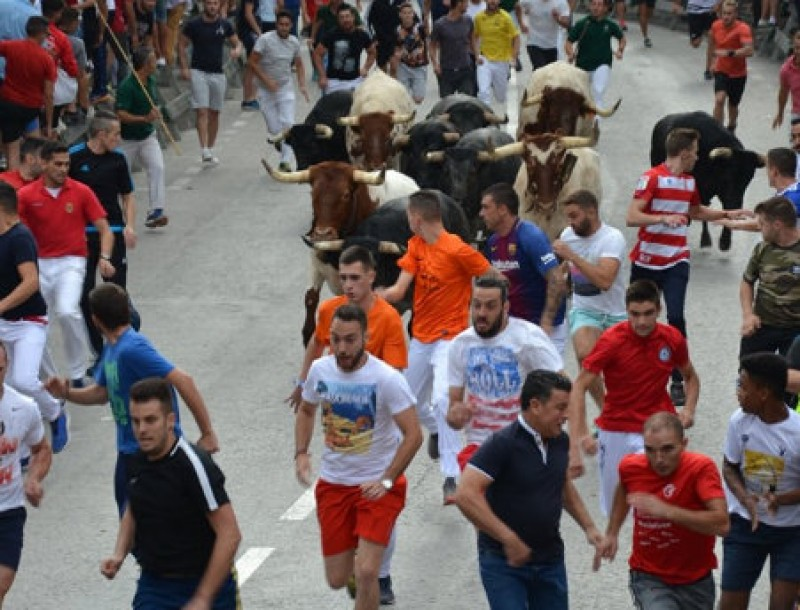 <span style='color:#780948'>ARCHIVED</span> - Two injured in the third Calasparra bull run of 2019