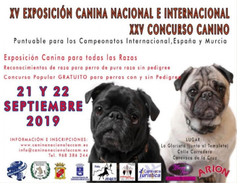 <span style='color:#780948'>ARCHIVED</span> - 21st and 22nd September, Caravaca de la Cruz dog show