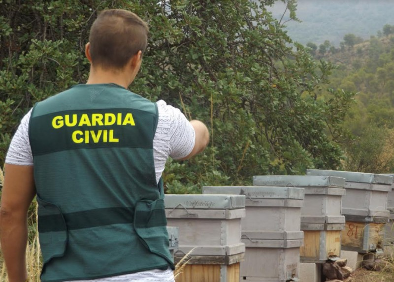 <span style='color:#780948'>ARCHIVED</span> - Police sting after theft of 12 beehives in the Lorca countryside