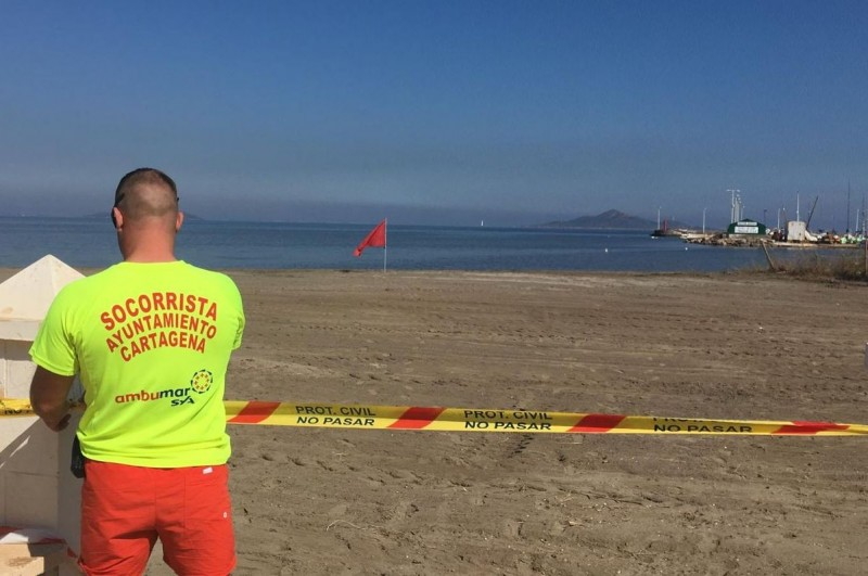 <span style='color:#780948'>ARCHIVED</span> - High levels of sewage bacterium close Mar Menor beaches in Cartagena