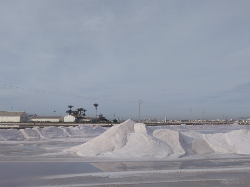 <span style='color:#780948'>ARCHIVED</span> - Salt harvest mounting up in San Pedro del Pinatar