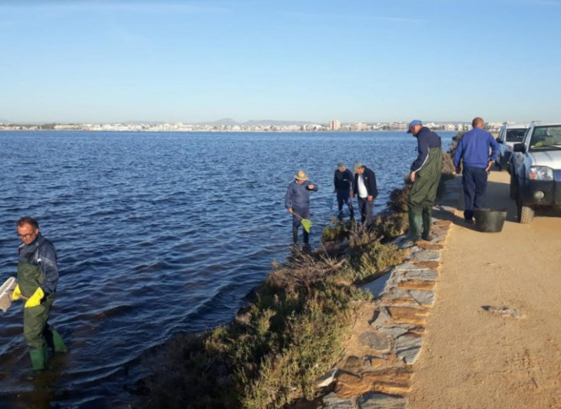 <span style='color:#780948'>ARCHIVED</span> - Mar Menor beaches re-open in San Pedro del Pinatar after thousands of dead fish were washed ashore