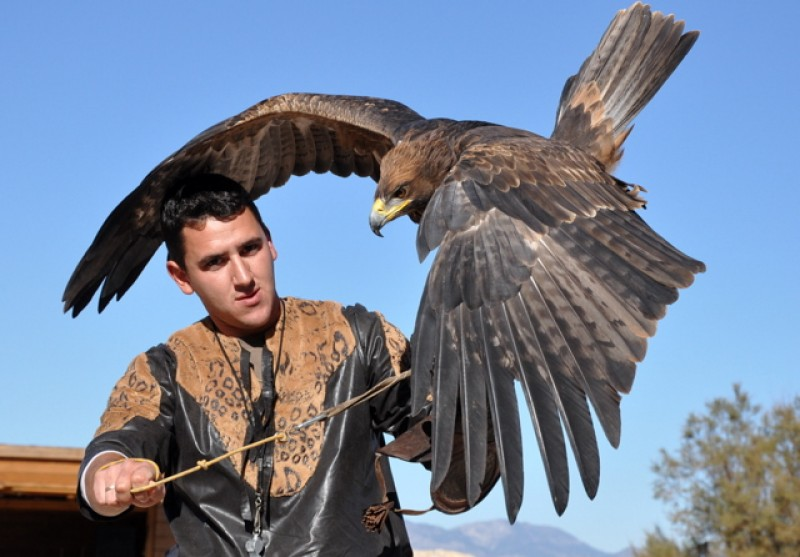 <span style='color:#780948'>ARCHIVED</span> - December 1st; Falconry in Lorca castle