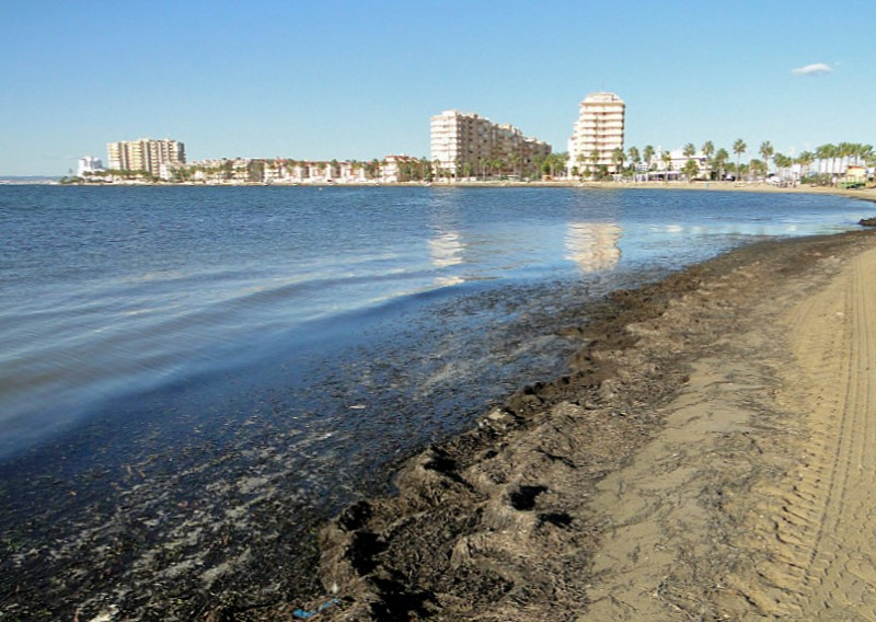 <span style='color:#780948'>ARCHIVED</span> - Costas identify 18 unauthorized locations where water runs off into the Mar Menor