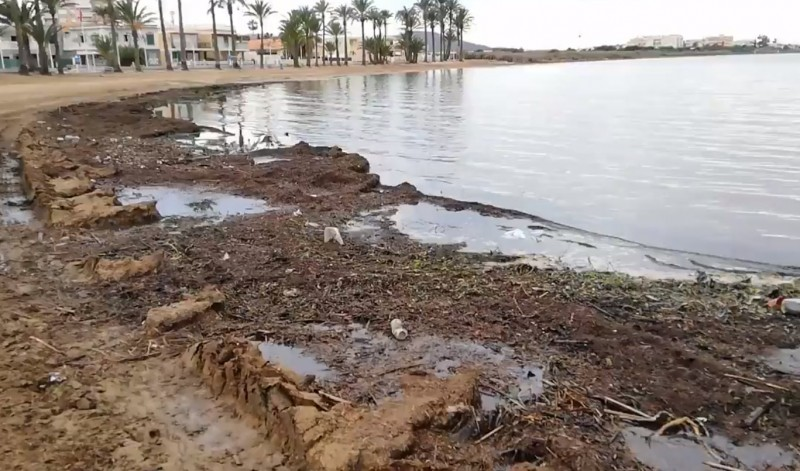 <span style='color:#780948'>ARCHIVED</span> - 1.8 million kilos of organic waste removed from the Mar Menor in 2 months