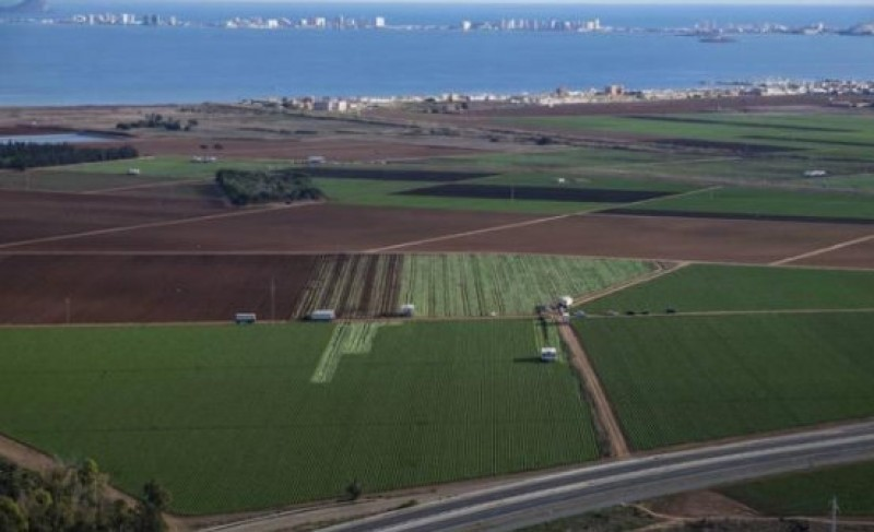 <span style='color:#780948'>ARCHIVED</span> - 21 more farming concerns under investigation for illegal practices in the Campo de Cartagena
