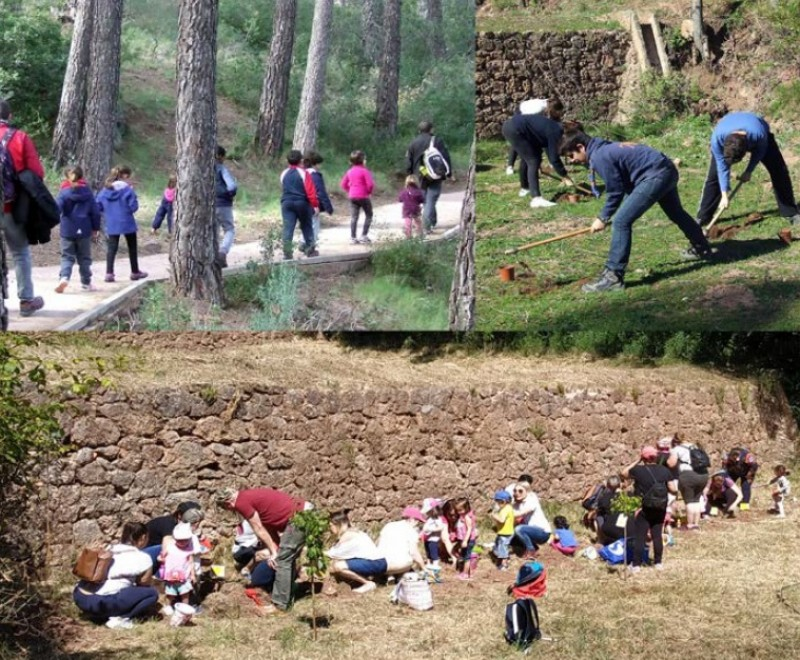 Sunday 22nd December Free family tree planting in the Sierra Espuña