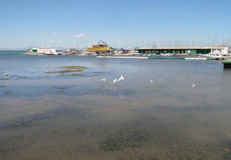 <span style='color:#780948'>ARCHIVED</span> - UN to investigate the deterioration of the Mar Menor