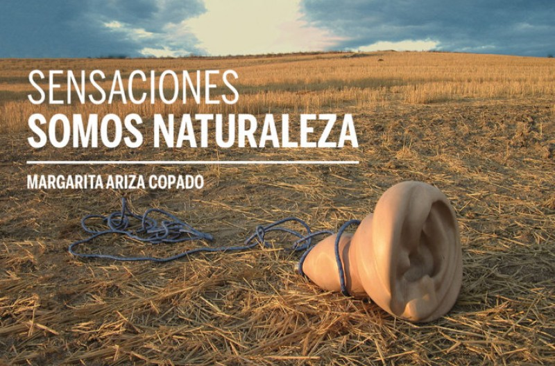 20th December to 1st March, Sensaciones Somos Naturaleza art exhibition in Cartagena