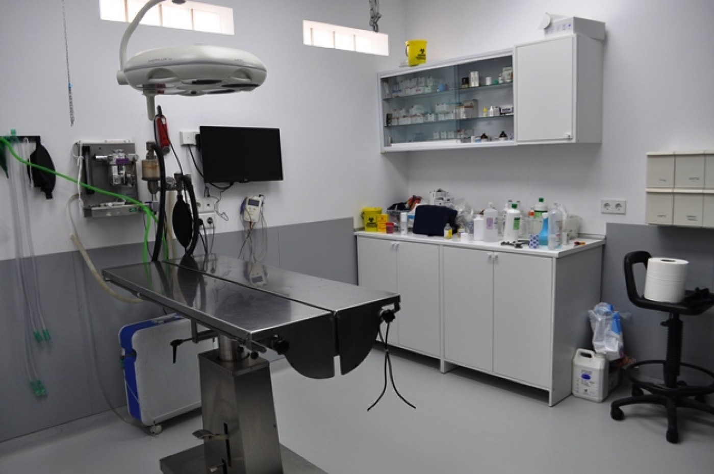 Maskota Veterinary Clinic and Surgery in Fuente Álamo