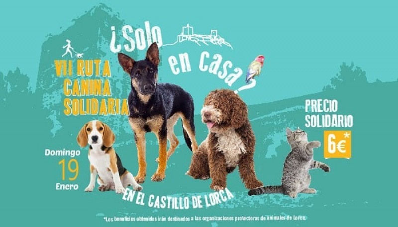<span style='color:#780948'>ARCHIVED</span> - 19th January, Charity dog walk to Lorca castle followed by a doggy day in the fortress