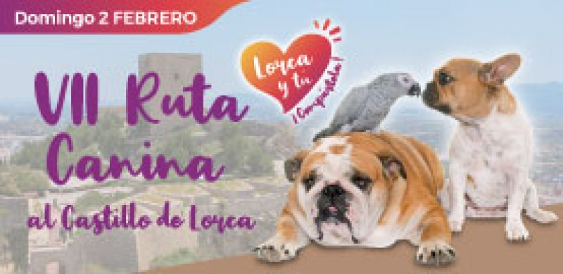 2nd February Charity dog walk to Lorca castle followed by a doggy day in the fortress