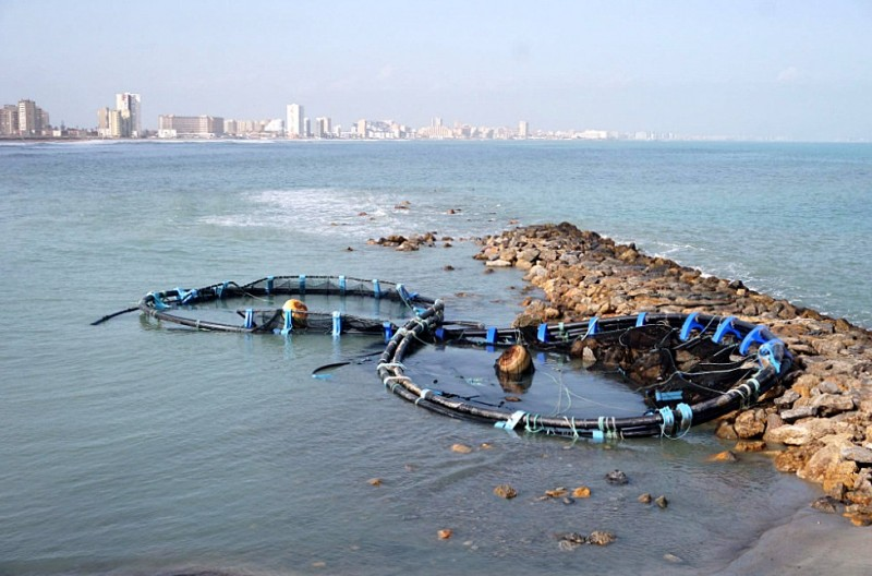 <span style='color:#780948'>ARCHIVED</span> - Fish farm enclosure washed up on the beach in Cabo de Palos