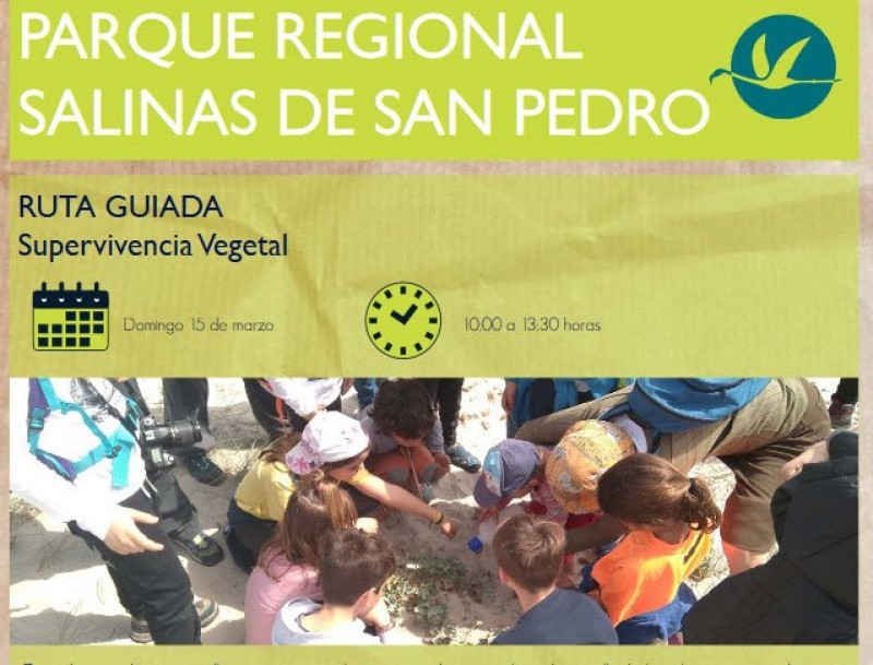 Sunday 15th March free family activity; survival techniques of plants, San Pedro del Pinatar