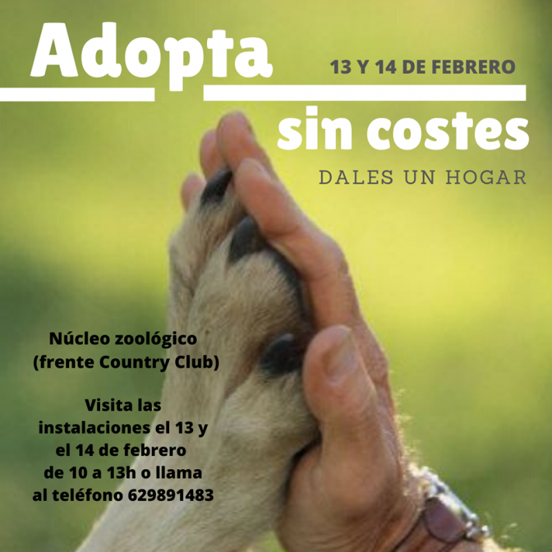 <span style='color:#780948'>ARCHIVED</span> - 13th and 14th February Mazarrón adopt a dog campaign