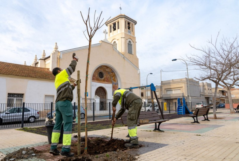 <span style='color:#780948'>ARCHIVED</span> - 200 new trees planted in the streets of Cartagena