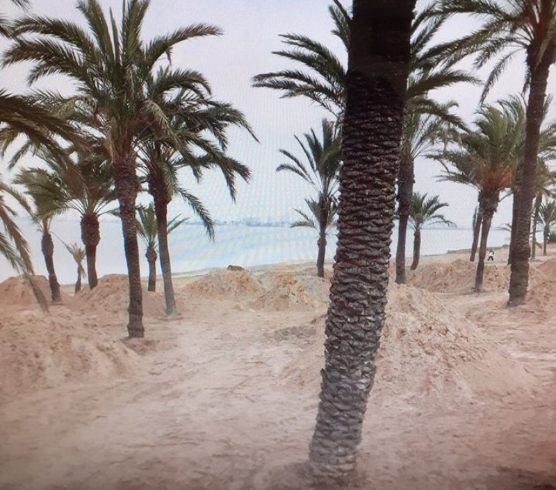 <span style='color:#780948'>ARCHIVED</span> - Sand going back on the beaches by Camping la Manga