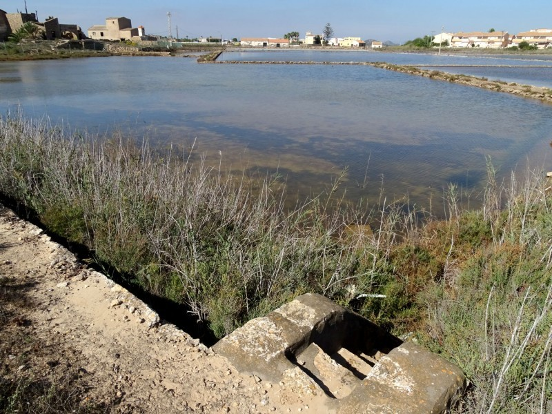 <span style='color:#780948'>ARCHIVED</span> - 8,000 euros for naturalists attempting to reactivate old salt flats alongside the Mar Menor