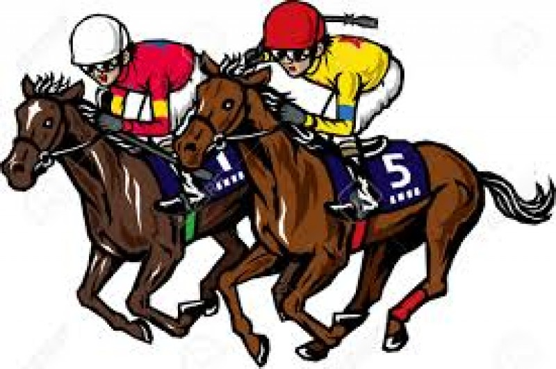 <span style='color:#780948'>ARCHIVED</span> - Friday 21st February Help Murcia Mar Menor Race Night Los Alcázares
