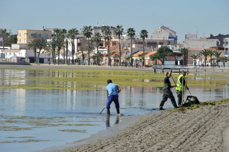 <span style='color:#780948'>ARCHIVED</span> - Latest water tests show Mar Menor remains safe for bathers says regional government