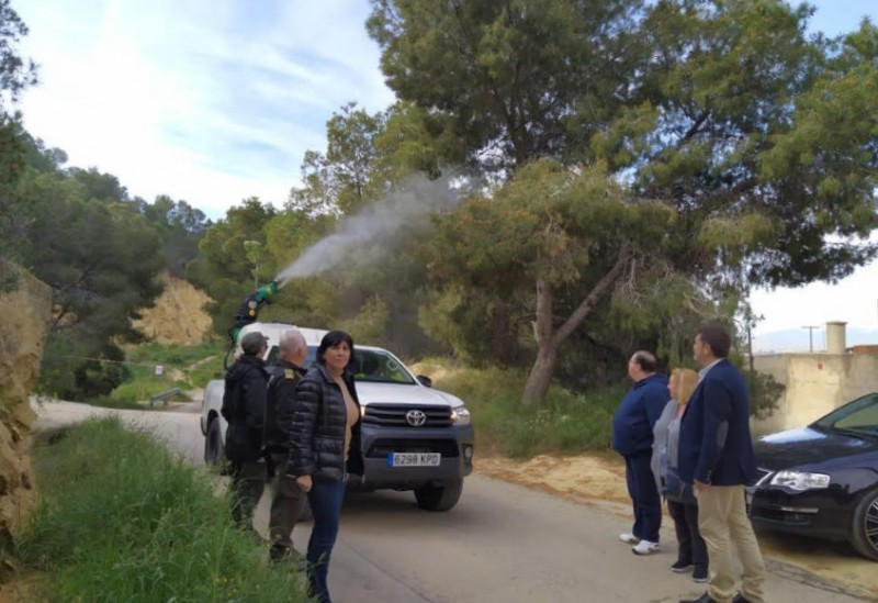<span style='color:#780948'>ARCHIVED</span> - Murcia government to spend 1.2 million euros on fighting the pine processionary caterpillar