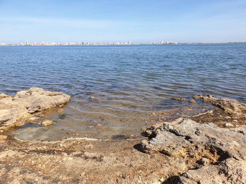 <span style='color:#780948'>ARCHIVED</span> - Water quality in the Mar Menor remains absolutely safe for bathing
