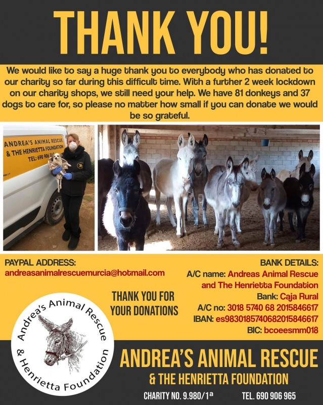 <span style='color:#780948'>ARCHIVED</span> - Andrea still has 87 donkeys and 37 dogs to feed as lockdown is extended....can you help
