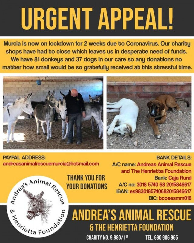 <span style='color:#780948'>ARCHIVED</span> - Our furry friends are in trouble too....abandoned dogs, charities without funds and animals left to starve