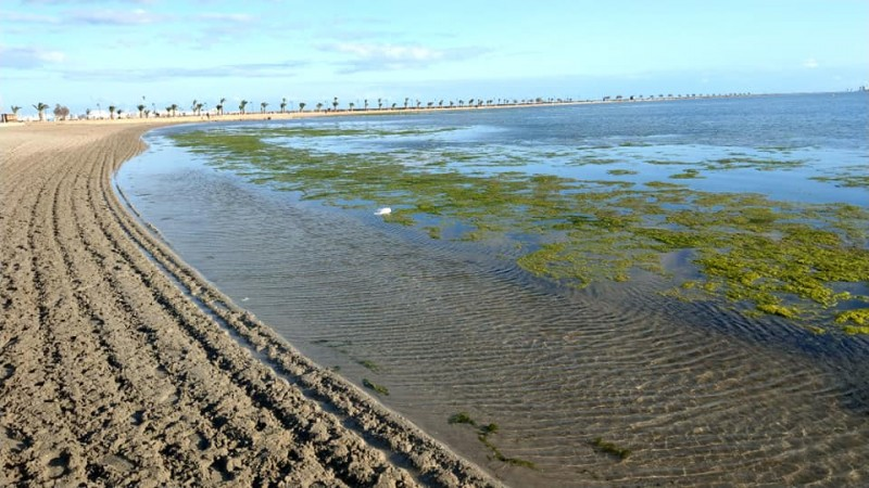 <span style='color:#780948'>ARCHIVED</span> - Mar Menor: another research group analyses Gota Fria effect on the lagoon
