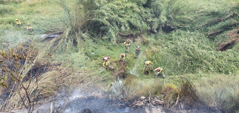 <span style='color:#780948'>ARCHIVED</span> - Fire in Cehegín rapidly extinguished on day 2 of summer fire season