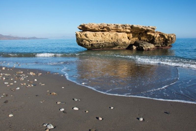 Free guided walking route Puntas de Calnegre natural park; Águilas July and August