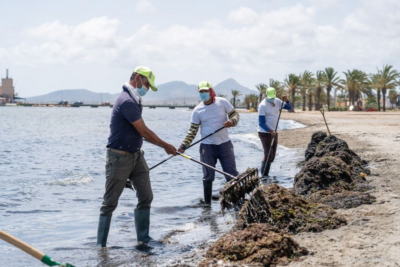 Weary municipal councils agree to clean deposits from Mar Menor themselves