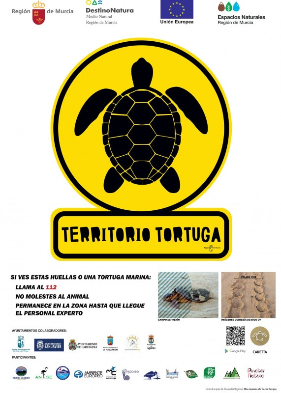 Turtle comes ashore in La Manga but leaves without laying eggs