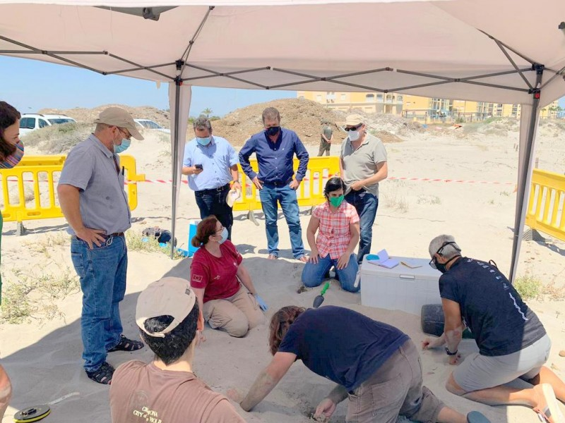 <span style='color:#780948'>ARCHIVED</span> - Excitement as 100 turtle eggs are laid on the beach in la Manga del Mar Menor