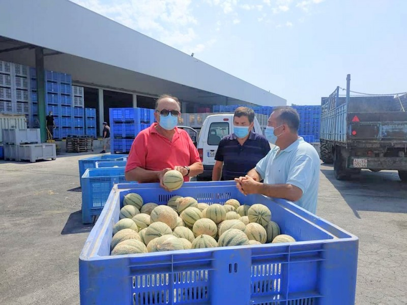 <span style='color:#780948'>ARCHIVED</span> - In spite of confinement Totana agriculturalists donate fruit for the needy